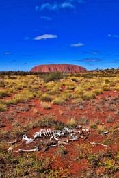 Uluru - 22.