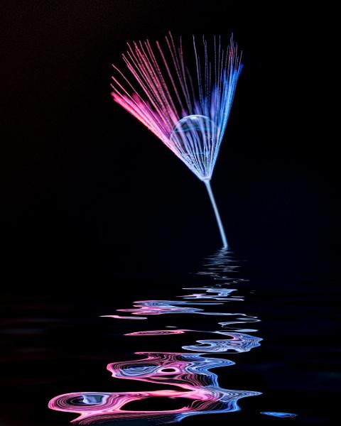 Illuminated dandelion seed by Richard725