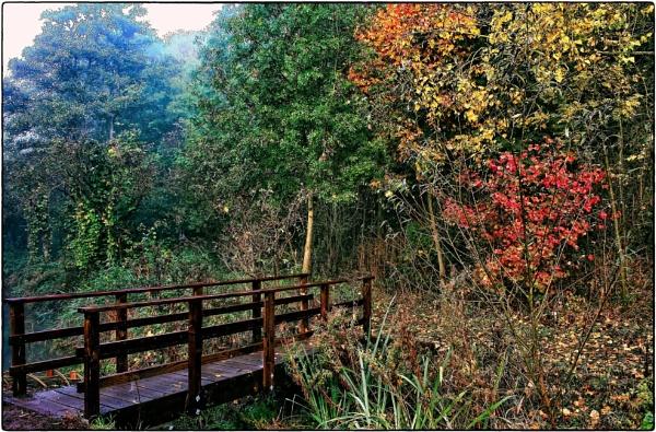 A Bridge To Autumn. by ThePixelator
