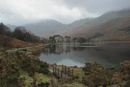 The Buttermere Pines by canoncarol at 10/10/2020 - 3:52 PM