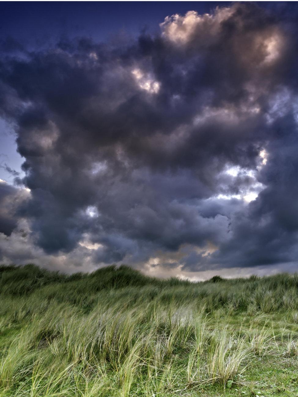Coastal dunes