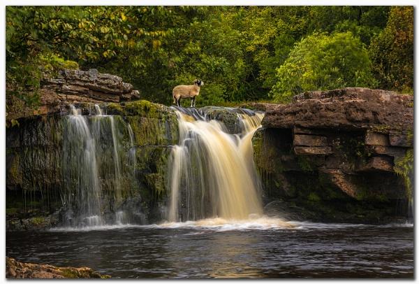 Wain Wath Falls by MalcolmS