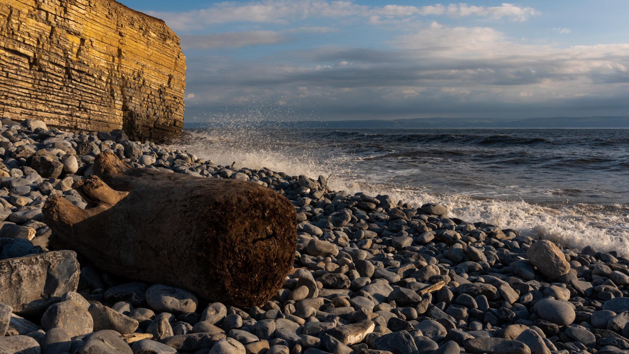 Log on rocks