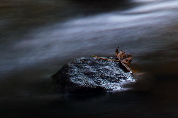Causey Burn Rock by RadarUK