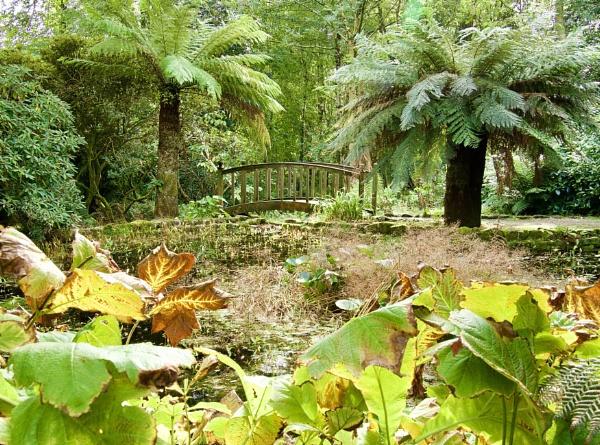 Trengwainton Garden Cornwall by caj26