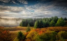 Cairngorms Autumn