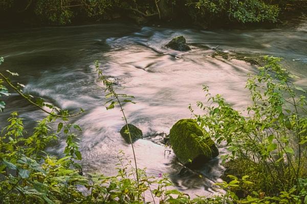 Three rocks swimming by OverthehillPhil