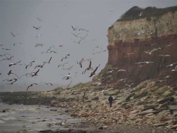 cold drizzly morning Hunstanton by GwB