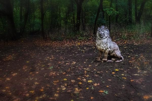 Cobtree Manor Park, Lion by Alfie_P