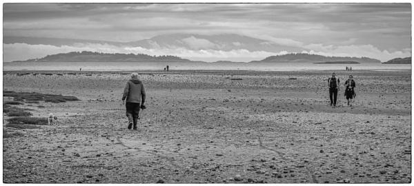 Cold Beach Day by Daisymaye