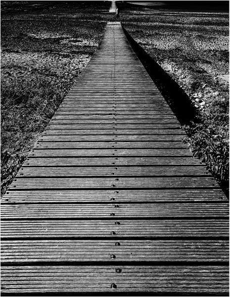 The Boardwalk by Dixxipix