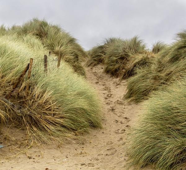 Rhosneigr Dunes by Irishkate