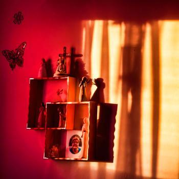 Window Light & Shadows