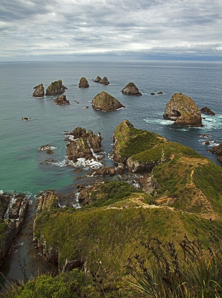 Nugget Point East Coast - South Island New Zealand by VincentChristopher