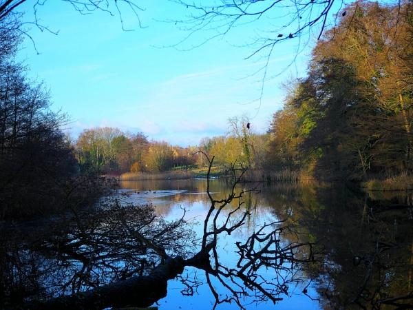 Autumn comes to Stanton lake. by niknakpaddywhack