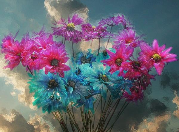 Flower Power by jrsundown