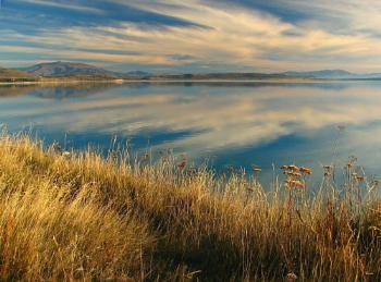 Lake Pukaki 81
