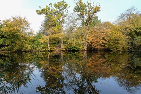 Autumn by 64Peteschoice
