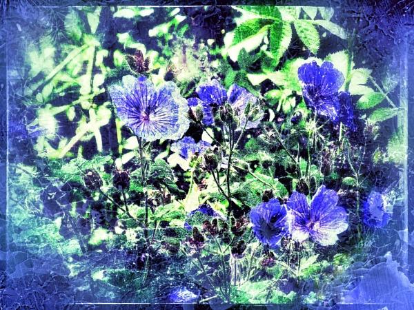 Blue by Monochrome2004