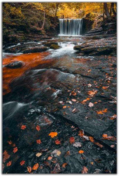 Autumn Flow by Satlight