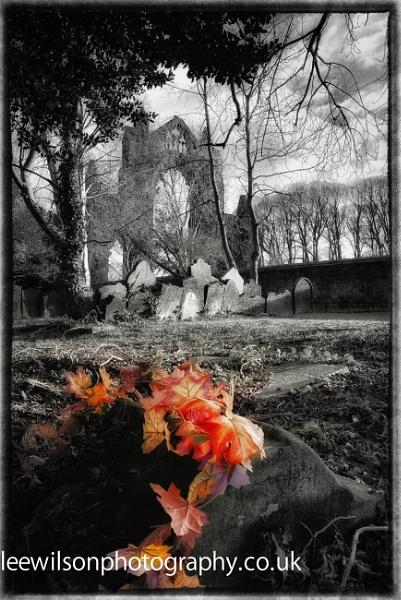 Autumn grave by Lee100