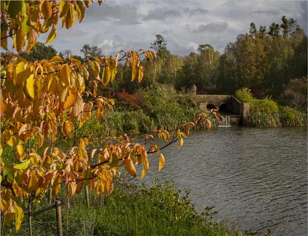 Autumnal Scene by AlfieK