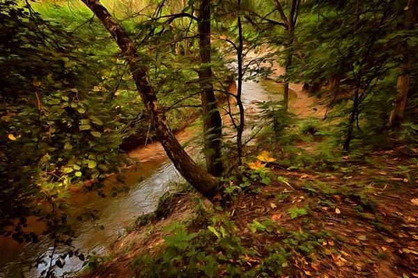 woodland creek by leo_nid