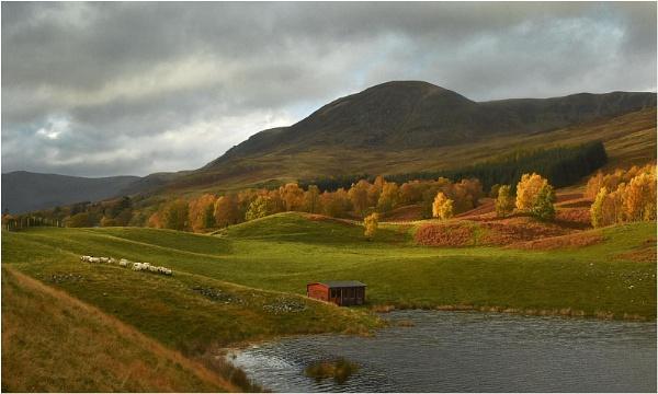 Autumn, Glen Clova by MalcolmM