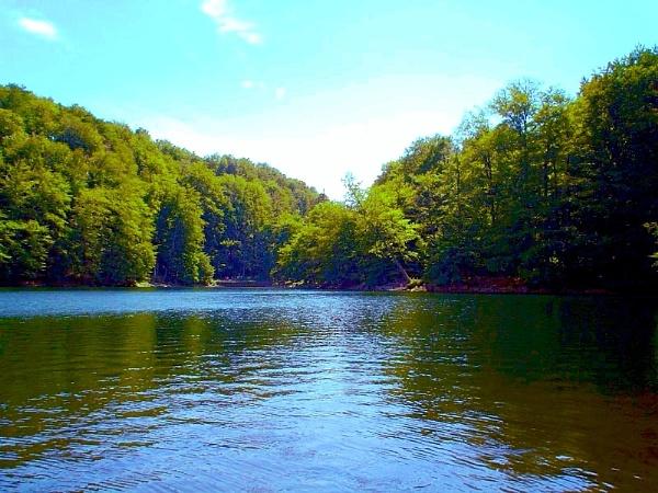 silence on the lake by elousteve