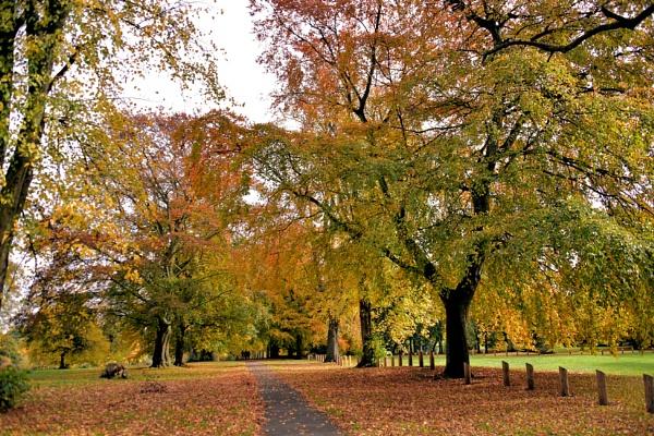 Autumnal splendour. by uktruckie