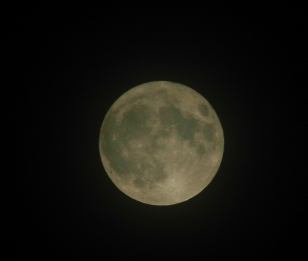 Blue Moon by Squirrel