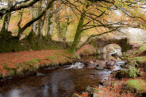 Autumn at Robbers Bridge by AndyCRevitt