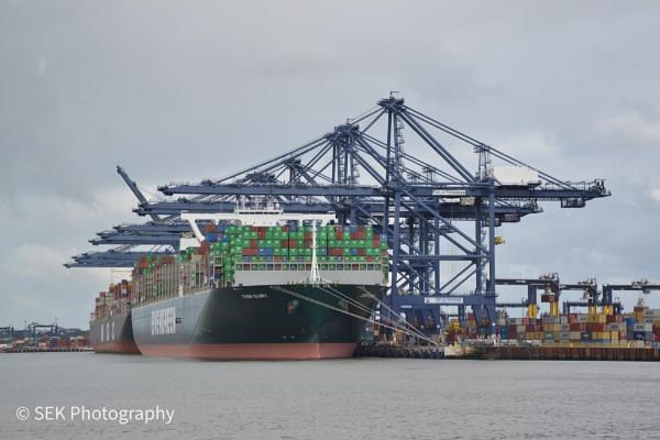 Port of Felixstowe by SusanKing