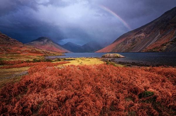Rainbow by DaveShandley