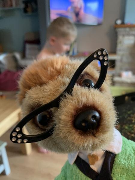 Meerkats by RLF
