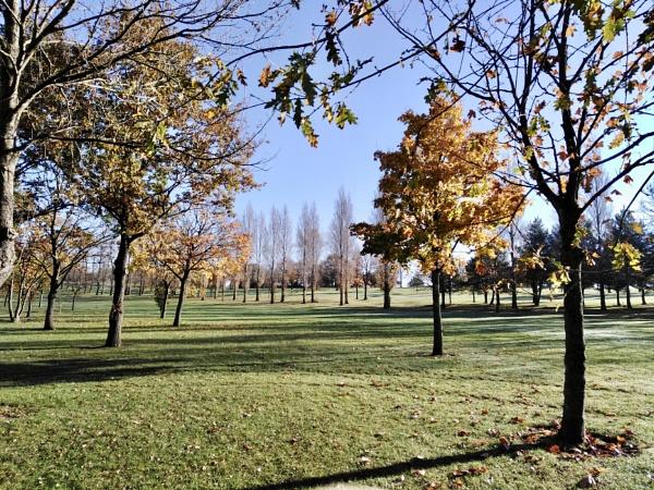 Filton Golf Course by dixy