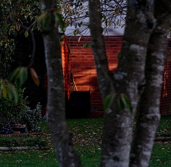 Last light..... by Mollycat