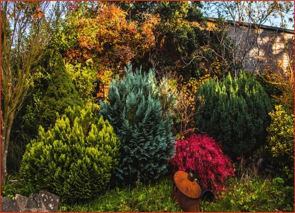 autumnal evergreen palette by estonian