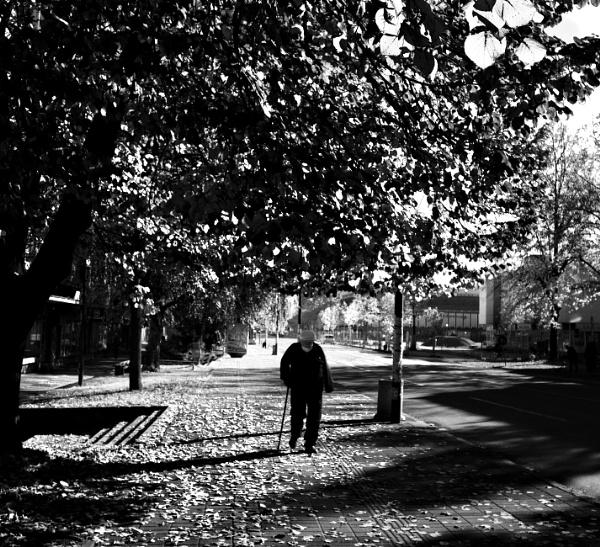 Autumnal by MileJanjic