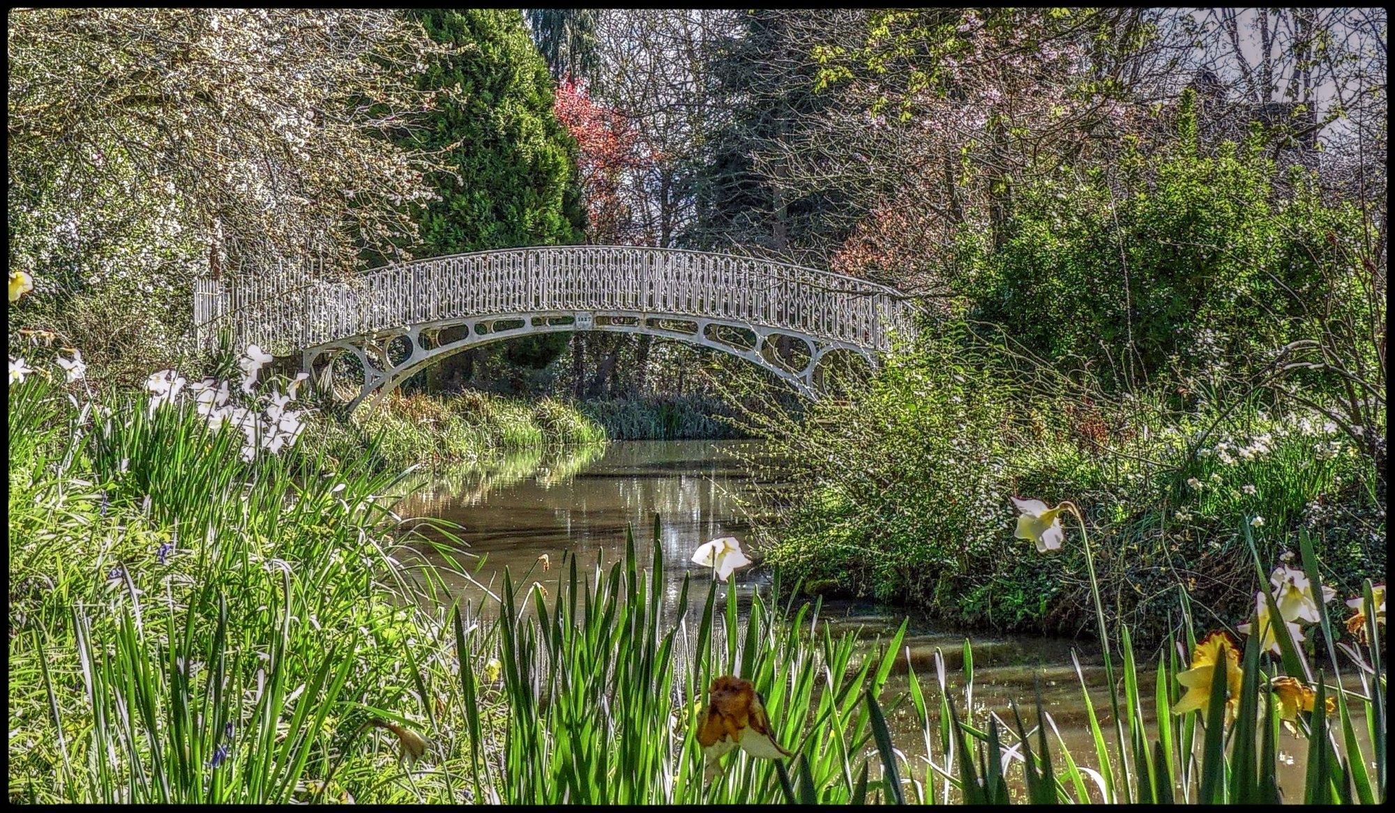 Serenity Bridge.