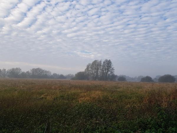 Frosty misty morning by GwB