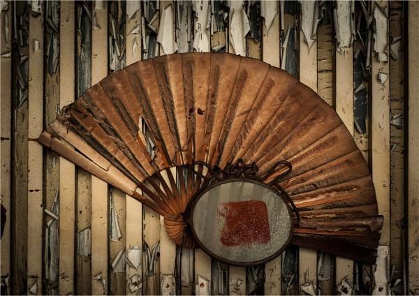 The Fan by KingBee