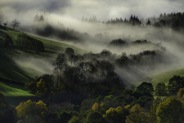 Autumn Mists by Brenty