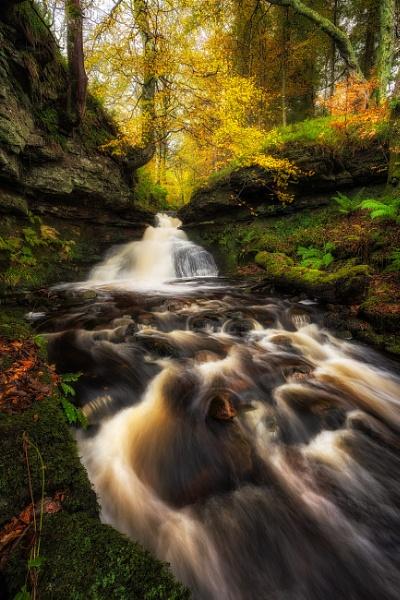 Autumn Flow by douglasR