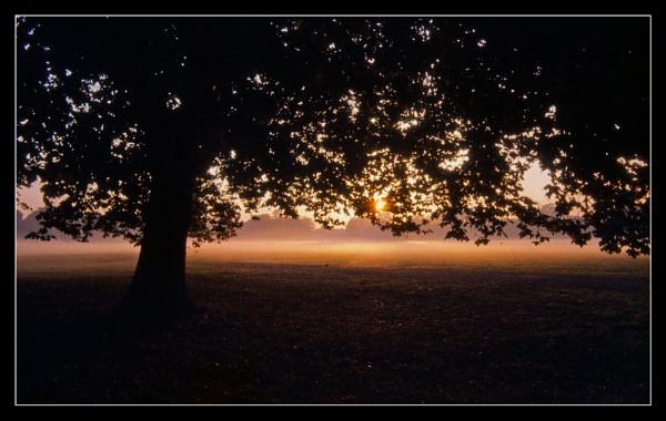 Ancient Sunrise by bluesandtwos