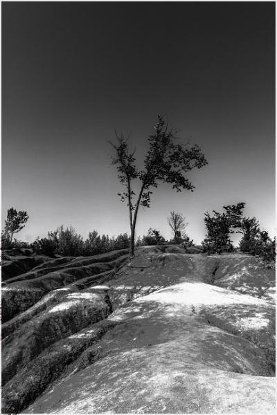 Cheltenham Badlands - Toronto by bobbyl