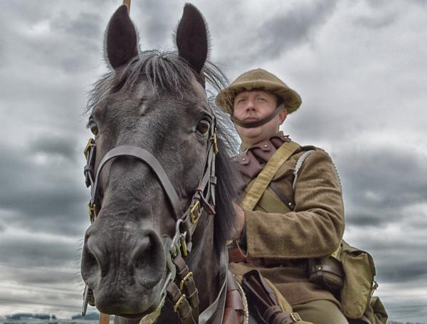 War Horse. by lufc62