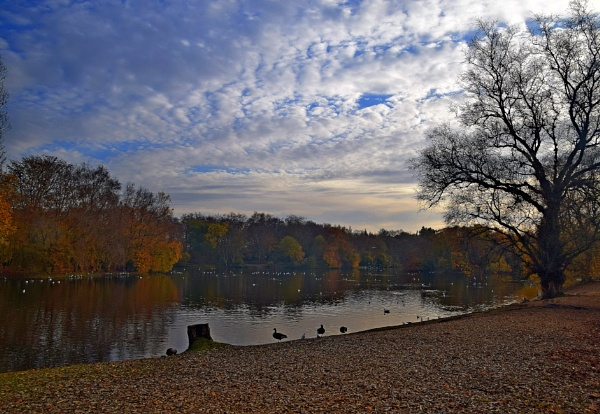 Autumn  tranqulity by oldham