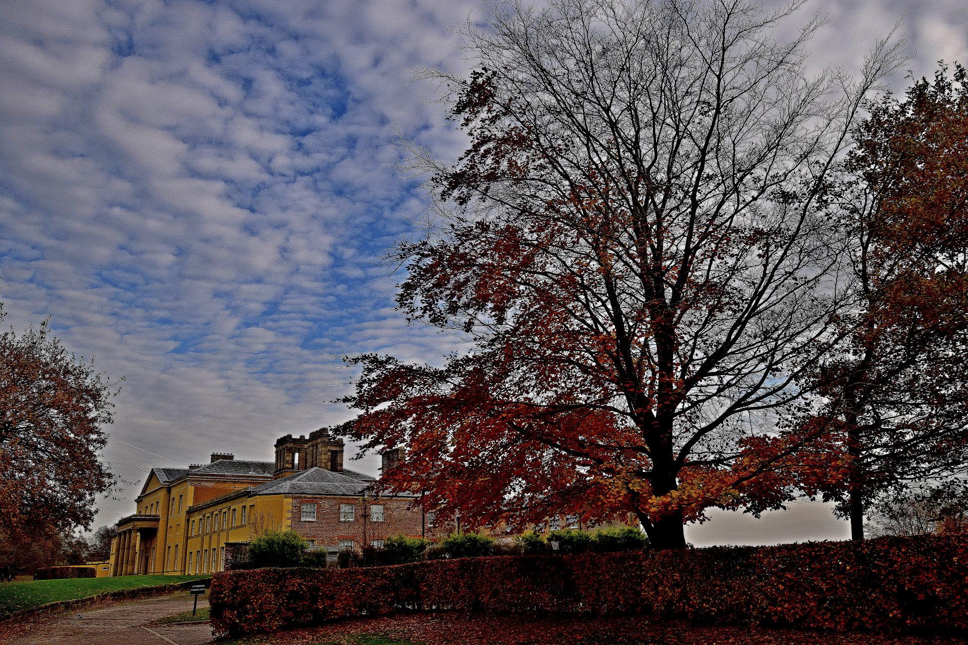 Autumn  at  Heaton   hall