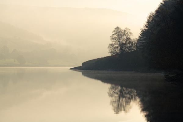 Misty Calm by Trevhas